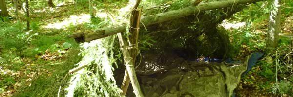 Abri végétal sauvage