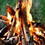 Les différents types de feux