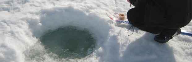 Pêche en régions polaires