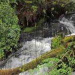 Eléments indiquant la proximité d'une source d'eau