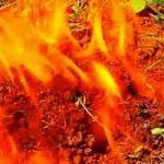 Que faire en cas de brûlures