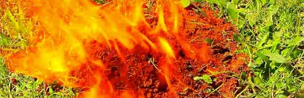 Que faire en cas de brûlure